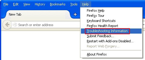 Go to Troubleshooting Information in Firefox