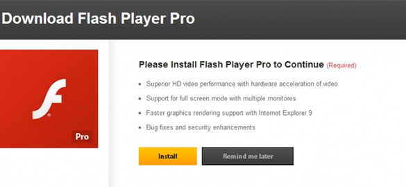 Bogus Flash Player Pro installation prompt displayed on a web page