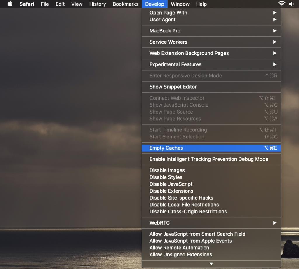 Mac Safari Empty caches